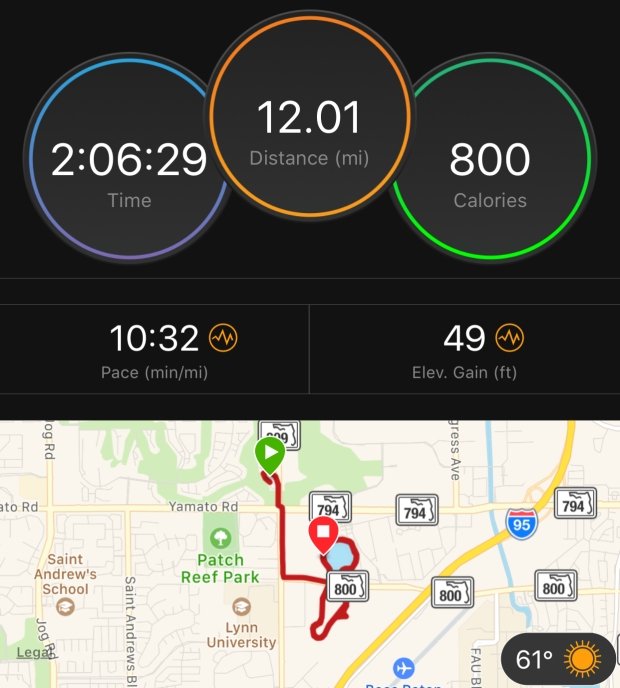 Margarita-Wells-Paris-Marathon-Training-Log-Long-Run-December-25-2017