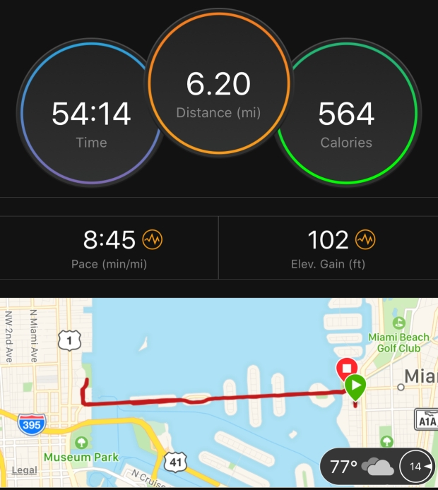 Margarita-Wells-Runs-Paris-Marathon-Training-Log-Venetian-Causeway-February-23-2018