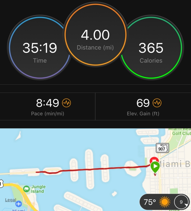 Margarita-Wells-Running-Venetian-Causeway-March-16-2018-Garmin-Connect